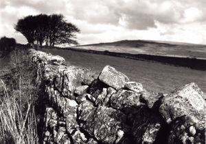 The Road to Dartmoor by Kim Sayer