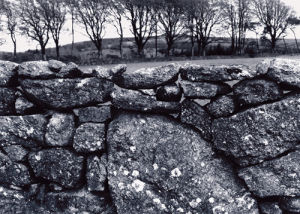 A Drystone wall, Dartmoor. by Kim Sayer