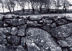 A Drystone wall, Dartmoor. by Kim Sayer