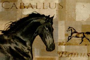Caballus I by Mark Chandon