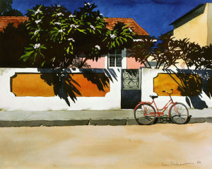 Bicycle and Frangipani by Ilana Richardson