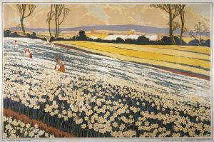 Empire Marketing Board - British Bulbs Flowering in a Field by A A Moore