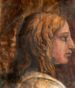 A Head from the Cartoon for the Tapestry of 'The Presentaion in the Temple' by Tommaso di Andrea Vincidor