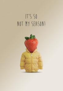 Not My Season by Matthew Elliott