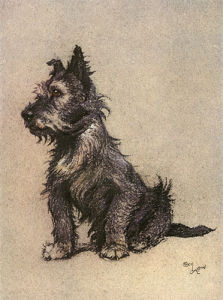 Cairn Terrier, 1928 by Cecil Aldin