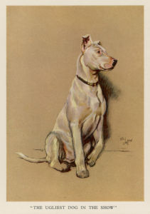 The Ugliest Dog in the Show, 1927 by Cecil Aldin