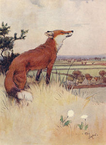White-Ear, 1912 by Cecil Aldin