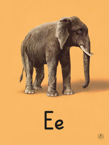 E is for elephant by Ladybird Books
