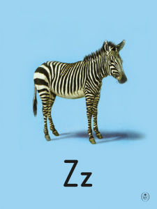 Z is for zebra by Ladybird Books