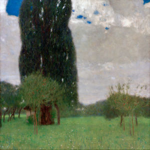 The Great Poplar I, 1900 by Gustav Klimt