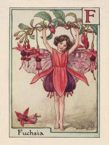 Fuchsia Fairy by Cicely Mary Barker