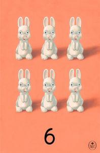 6 by Ladybird Books