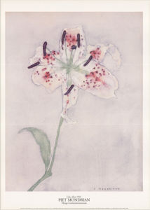 Lily, after 1921 by Piet Mondrian