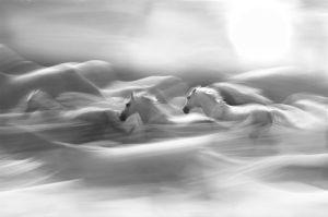 Morning Dream by Milan Malovrh