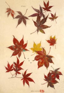 Red leaves by Anonymous