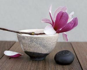 Magnolia et bol by Amélie Vuillon