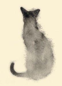 Chat de dos by Aurore de la Morinerie