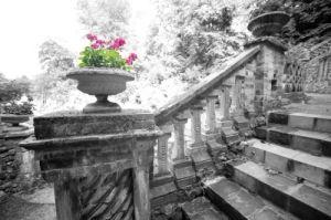 Victorian Garden I by Richard Osbourne