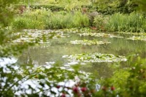 Monet's Garden, Giverny by Richard Osbourne
