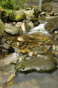 Yorkshire Dales - Stream by Richard Osbourne