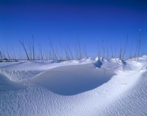 Snow Drifts by Richard Osbourne