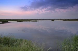 Sunset, Titchwell Marshes by Richard Osbourne