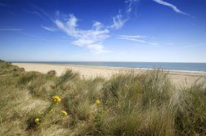 Norfolk Dunes by Richard Osbourne