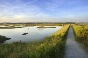 Titchwell Marshes, Norfolk by Richard Osbourne