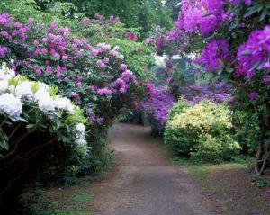Sheringham Park Norfolk by Richard Osbourne