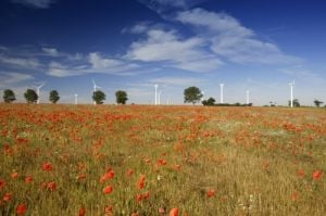 Poppies and Wind Turbines by Richard Osbourne