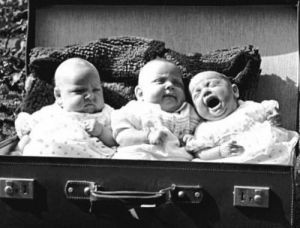 Briefcase Triplets by Babies Collection