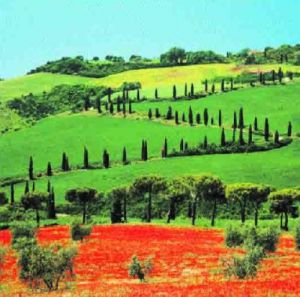 Tuscany, Italy by C.H. Hermes
