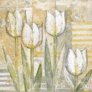 Tulip III by Eric Barjot