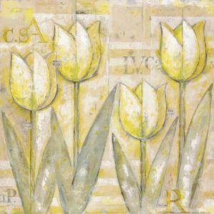 Tulip IV by Eric Barjot