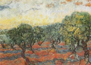 The Olive Grove by Vincent Van Gogh