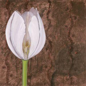 Bloom I by Olivia Celeste