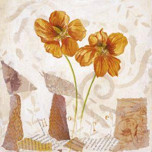 Poppy I by Olivia Celeste