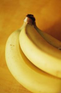 Musa, Banana by Carol Sharp