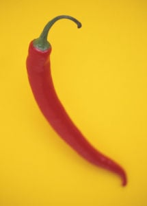 Capsicum annuum, Chilli by Cunningham -Waterman