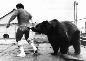 Andy Robin wrestler with Hercules the bear 1979 by Mirrorpix