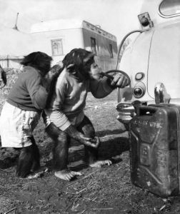 Charlie and Skipper finding petrol to travel by Mirrorpix