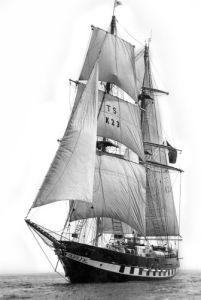Sail training Ship Royalist, 1976 by Mirrorpix