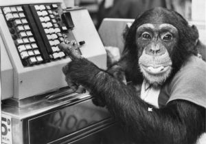 Judy the chimp rings through the bill by Mirrorpix