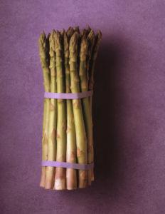 Asparagus officinalis, Asparagus by Jess Koppel