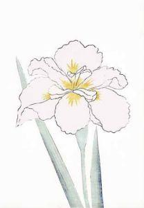 Japanese Irises I - IV, Japanese Iris III by Modern Editions