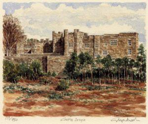 Castle Drogo by Glyn Martin