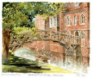 Cambridge -Mathematical Bridge by Philip Martin