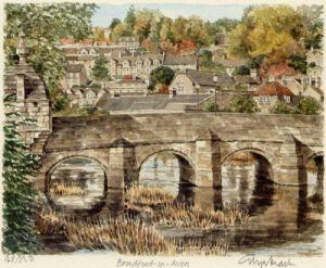 Bradford-on-Avonl by Glyn Martin