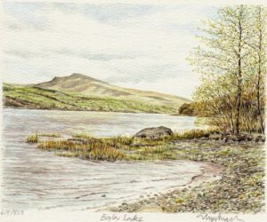 Lake Bala by Glyn Martin
