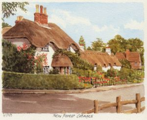 New Forest - Swan Green by Glyn Martin